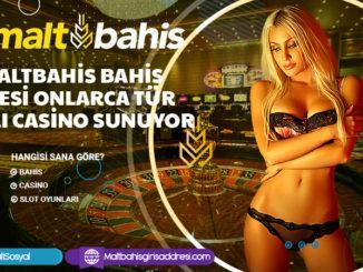 Maltbahis bahis sitesi onlarca tür canlı casino sunuyor
