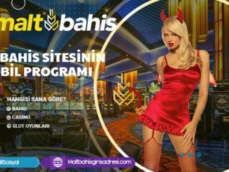 Maltbahis sitesinin mobil programı